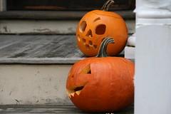pumpkin 081