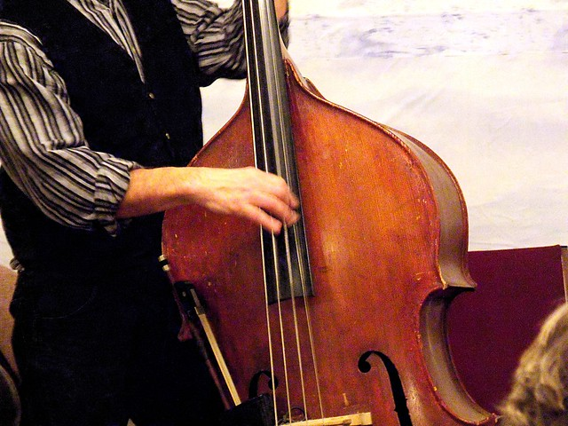 String Bass - also called double bass, upright bass, bass fiddle, bass violin, doghouse bass, contrabass, bass viol, stand-up bass or bull fiddle! - Fujifilm FinePix S1500