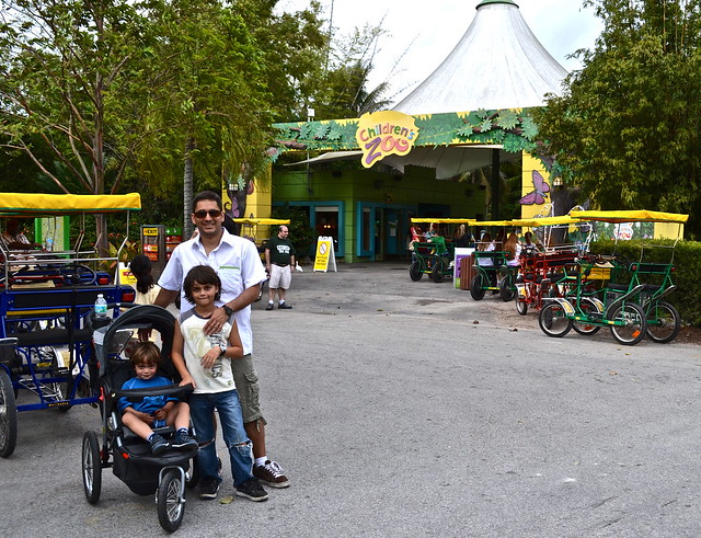 Miami metro zoo review what to do with kids in miami - Devices burn energy even turned off ...