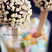Cake pops by dhmig