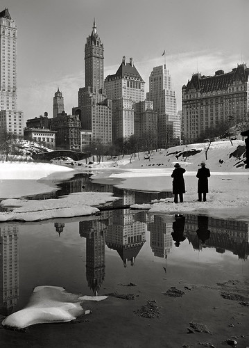 samuel gottscho 1933 Central Park by david haggard