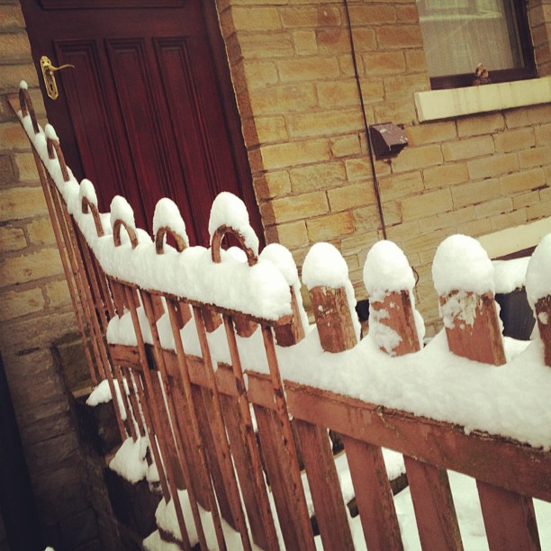 #snow #fence