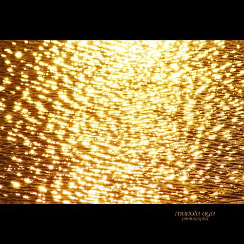park light sunset lake reflection nature water square golden surface tones mesmerizing thegalaxy vigilantphotographersunite vpu2 vpu3 vpu4