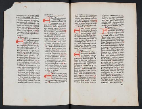 Dutch annotations in Crescentiis, Petrus de: Ruralia commoda