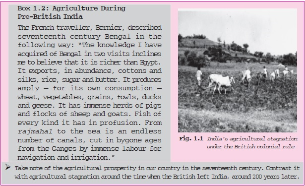 NCERT Class XI Economics: Chapter 1 – Indian Economy on the Eve of