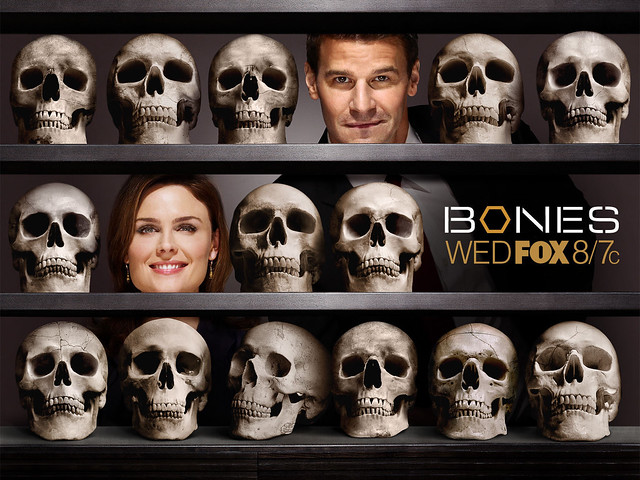 Bones-Wallpaper-3-temperance-brennan-9121078-1600-1200