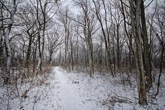 Illinois 2013