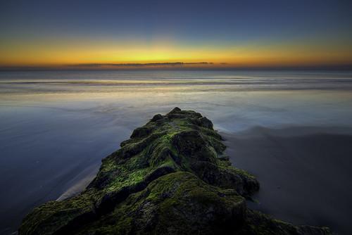 ocean nature water sunrise sand southcarolina alpha a65