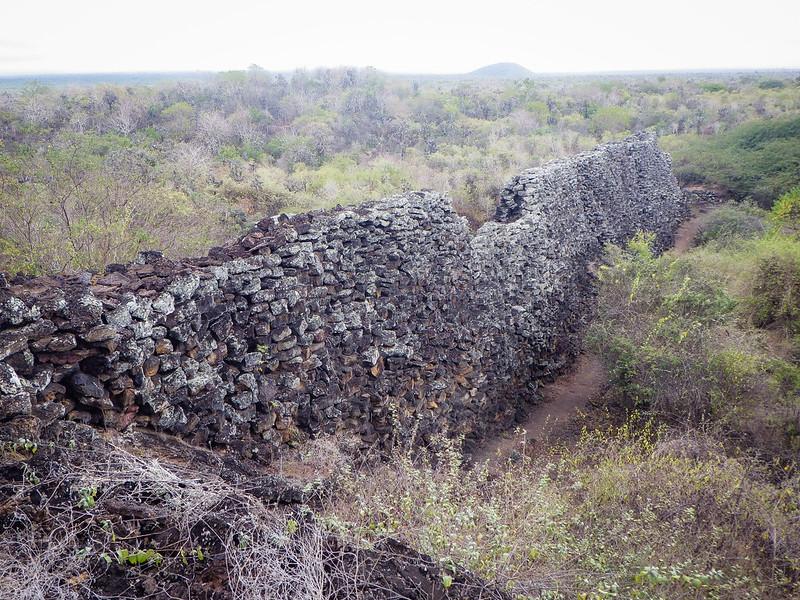 Galapagos '12