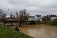 La Seille - Pont Lothaire
