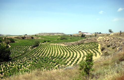 Rioja part II 083