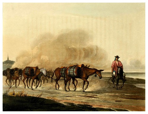 019-Transporte de vino en convoy de mulas-Picturesque illustrations of Buenos Ayres and Monte Video..-1820- Emeric Essex Vidal
