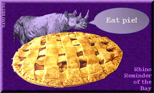 RHINO_AND_PIE