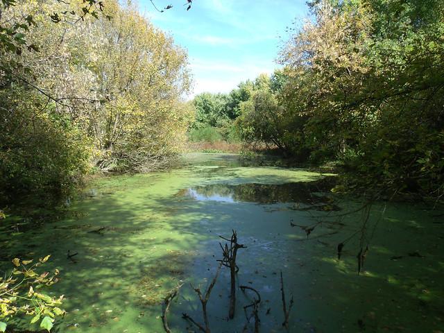 Island Pond Loop Trail Harriman Ny