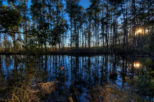 county blue trees sunset orange alex water pond woods nikon maryland shore harriet blackwater eastern hdr dorchester tubman d300s thechallengefactory erkiletian