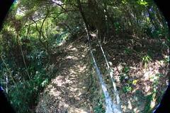 炮子崙登山步道