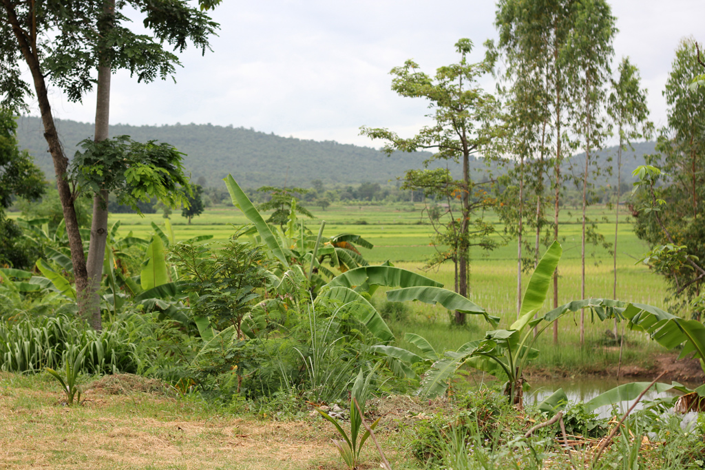 Peacefulness and fresh air in Northern Thailand