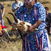 Battle site commemoration of the Nez Perce Tribe, Big Hole National Battlefield