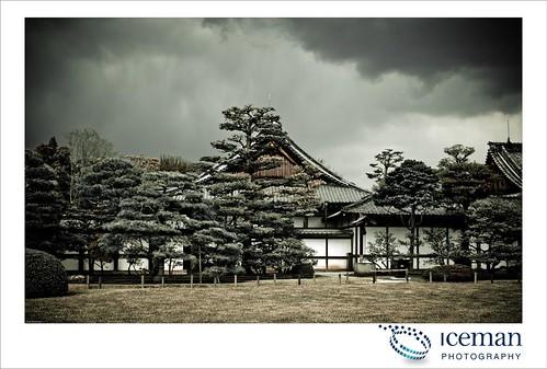 Nijo Castle 477