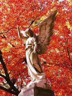 Autumn Cemetery Angel