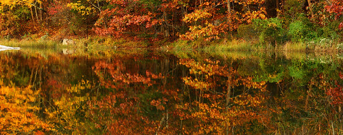 autumn red nature water yellow canon reflections landscape pond connecticut ct sigma canond60 falls conneticut mystic noank mysticconnecticut sigma1770mm sigma1770mmf284 beebecove southeastconnecticut noankconnecticut