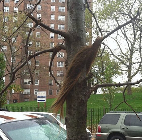 Hurricane-Sandy-mother-nature-wig-snatcher