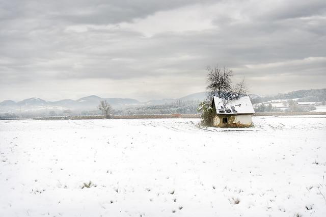 wintershots 2