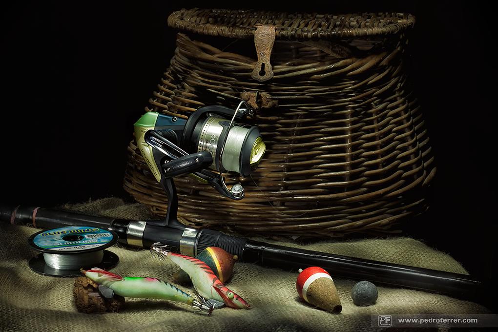 Nos vamos de pesca?