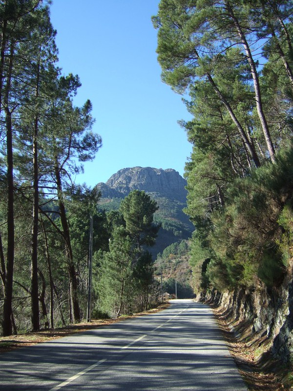 Vila Real > Fontes > Vila Real 8353663047_576d569ea7_c