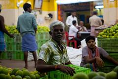 (Green) oranges in Koyambedu Market
