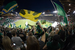 Within the Timbers Army