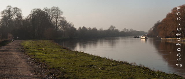 Thames at Petersham