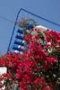 Kreta 2007-2 244