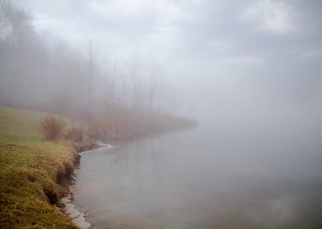 Indigo Fog Study