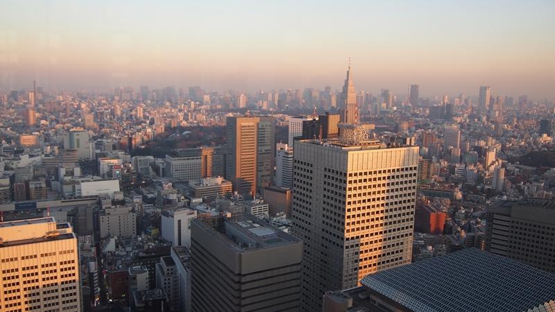 Tokyo Honeymoon 2013_day01_016