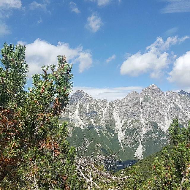 Photo:Lass dir diese Weite schenken 😊 #tirol #tyrolia #stubaital #mountains #alps #alpen #berge #treehugger #austria #nature #motherearth #earthlover #everydayisearthday #treeporn #treelovers #treesofinstagram #treecollection #natureisbeautiful #nothingis By Stefan_Moser