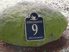 Kauai Lagoon Golf Club 456