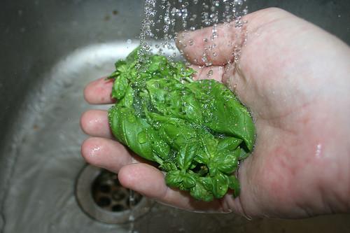 20 - Basilikum waschen / Clean basil
