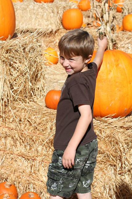 10-13-12 20 pumpkin patch