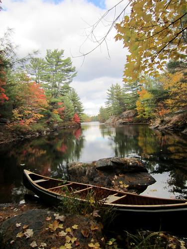 autumn ontario gravenhurst