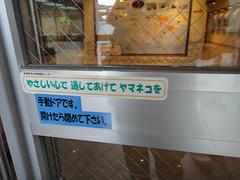 20120927_105308_TX5_46