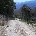 Camino entre Las Palmas y La Paz, Región Mixteca, Oaxaca, Mexico por Lon&Queta