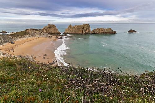 Playa Arnía