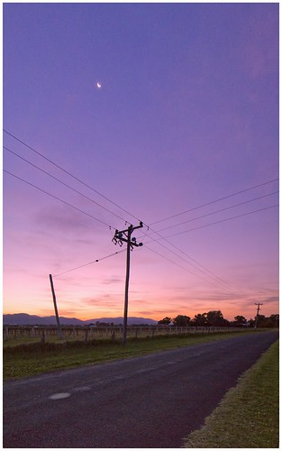 Poles_And_Wires_6