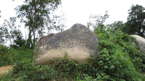 Koh Samui Mountain サムイ島の山にて (8)