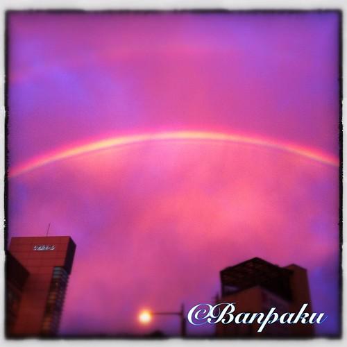 ©Banpaku 夕方、空が暗くなり始めた頃に東の空にほんの数十秒あらわれた虹。 薄暗い空に真っ赤な雲、ネオンのように鮮やかな虹のコントラストは少し異様な雰囲気でした。 あえて画像の色調は無加工、いわゆるスッピン状態です。 iphoneで撮影。 #japan #hyogo #itami #rainbow #sky #cloud #sunset #iphone #iphonephoto #instagram #igersjp #iphoneography #iphoneographer #iphersjp