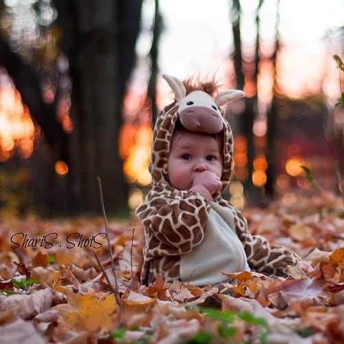 Behold the cuteness#cord #giraffe #Halloween #Halloweencostume #baby #thumbsucker #enjoyingthesmallthings #instagood #instagood_lawrenceburg_indiana