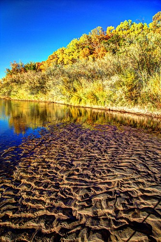 autumn newmexico rio landscape grande valley nm joeldeluxe hdr 2012 riparian riogrande panorma southvalley october2012 ironwoodfarms