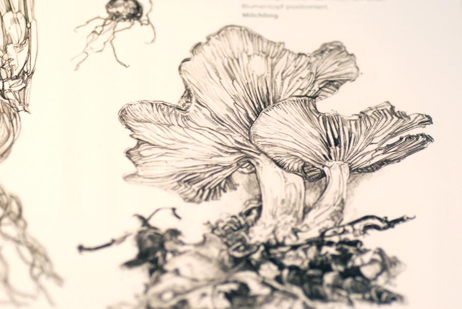 Книга anatomy for the artist, автор sarah simblet перемена участи.