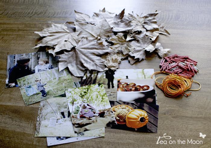 Tardor 2012 0 materials 0
